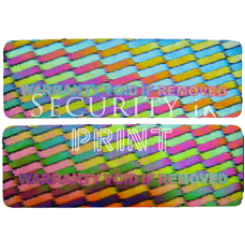 Rectangular 30x10mm Silver Self-Adhesive Hologram Security Sticker R3010-1S